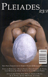 Pleiades23-1